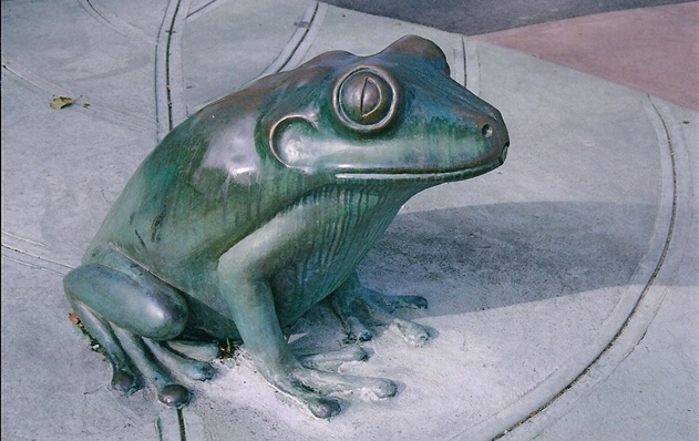 Bronze Tree Frog Sculpture - Spirit Playground, Long Island City, New York